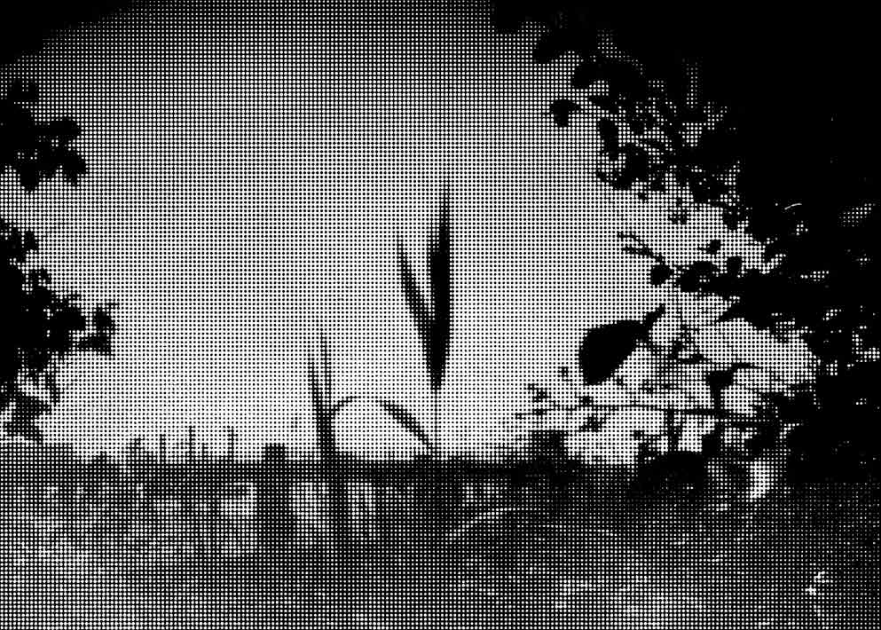 moch-deuxpapillonsaufildeleau-trame#19