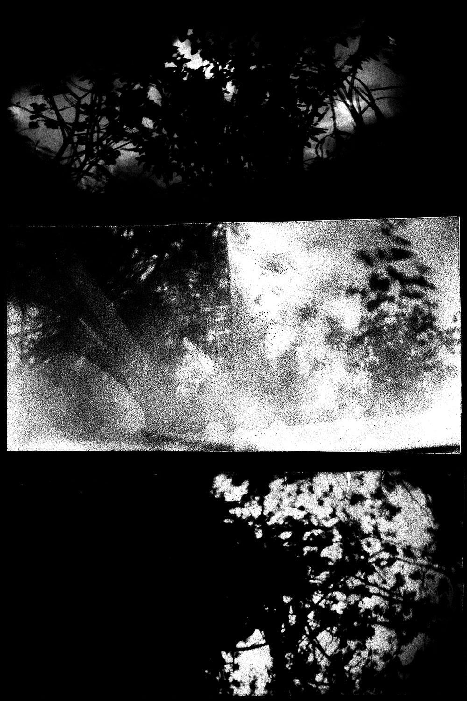 moch-gallery-deuxpapillonsaufildeleau#10